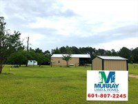 Beautiful Horse Property : Gloster : Amite County : Mississippi