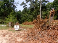 Residential Lot For Sale With Powe : Eufaula : Barbour County : Alabama