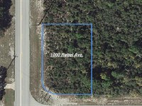 Exquisite Lake Community Lot : Lake Placid : Highlands County : Florida
