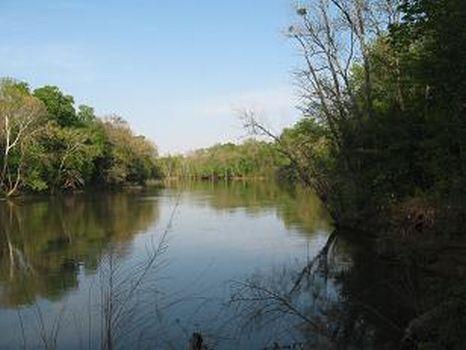 Bent River Plantation LLC : Woodville : Bertie County : North Carolina