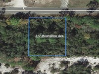 Quiet Lot In Sun N Lakes Estates : Lake Placid : Highlands County : Florida