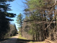 Walk to Mad River : Williamstown : Oswego County : New York