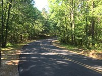 Sustainable 9.23 Wooded Tract : Moody : Saint Clair County : Alabama