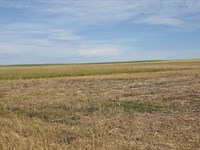 No Covenants, Land and Water Shares : Torrington : Goshen County : Wyoming