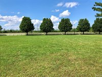 Land For Sale In Edenton.57 Acre : Edenton : Chowan County : North Carolina