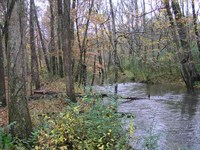Year Round Creek No Restrictions : Palmer : Grundy County : Tennessee