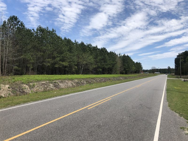 Commercial Development Potential : Lumberton : Robeson County : North Carolina