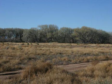 Petrified Forest Estates Unit 3 : Apache County : Apache County : Arizona