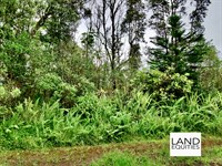 Gorgeous Black Sand Beach Lot : Pahoa : Hawaii County : Hawaii