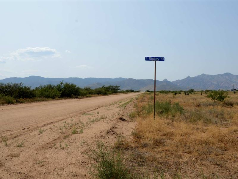 Awesome Adj Lots, Power, $150/Mo : Pearce : Cochise County : Arizona