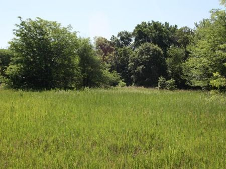 Huge Lot 1/2 Mile To Perry Lake : Ozawkie : Jefferson County : Kansas
