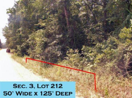 Wiggins Village Lot Lake Livingston : Livingston : Polk County : Texas