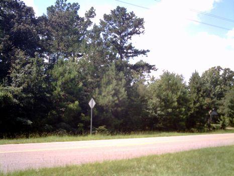 Wooded Lot near Andalusia : Andalusia : Covington County : Alabama