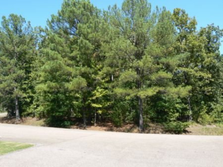 .4 Acre Rogers Springs Lakeview Lot : Middleton : Hardeman County : Tennessee
