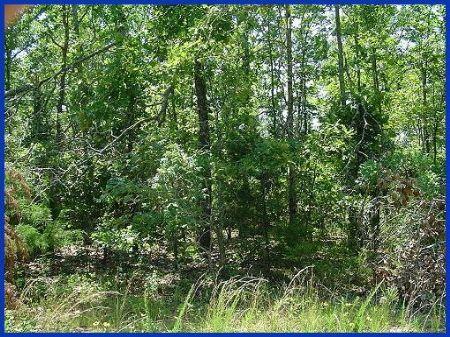 Horseshoe Bend Lot 1 Mile To Lakes : Horseshoe Bend : Izard County : Arkansas