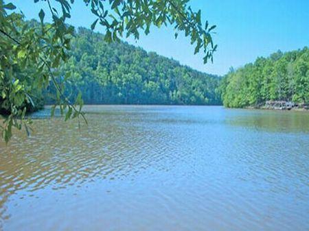 Lake Front Property : Oxford : Randolph County : Alabama