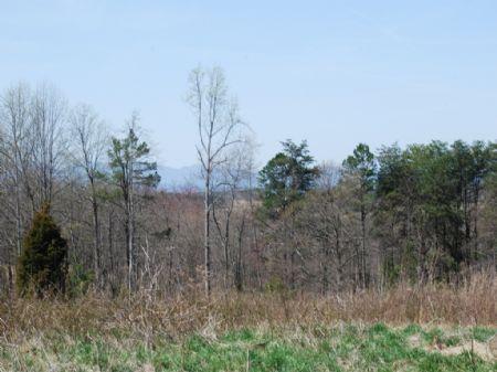 16.65 Acres Green Creek Area : Chesnee : Spartanburg County : South Carolina