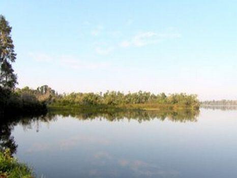 Lakefront Acreage - Lake Pierce : Lake Wales : Polk County : Florida