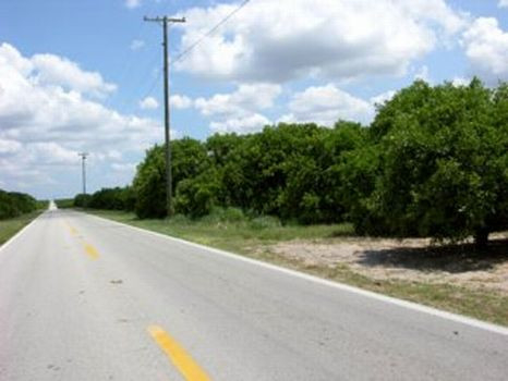 Lewis Griffin Road Investment : Lake Wales : Polk County : Florida