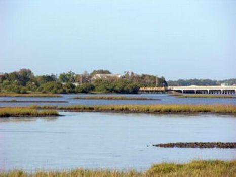 Nature's Coast - 20 Acres : Cedar Key : Levy County : Florida