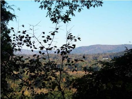 Large 10 Acre Water View Lot : South Pittsburg : Marion County : Tennessee