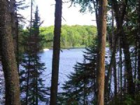 Lot 29 Secluded Pt. Mls# 1093427 : Michigamme : Baraga County : Michigan