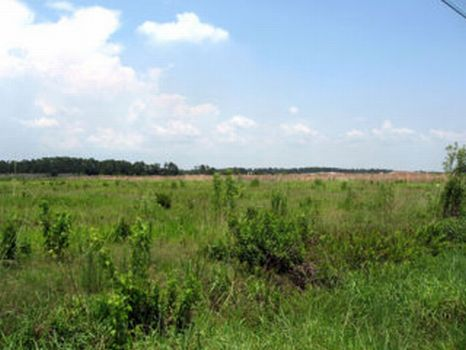 Sweat Loop Road Homesite : Wimauma : Hillsborough County : Florida