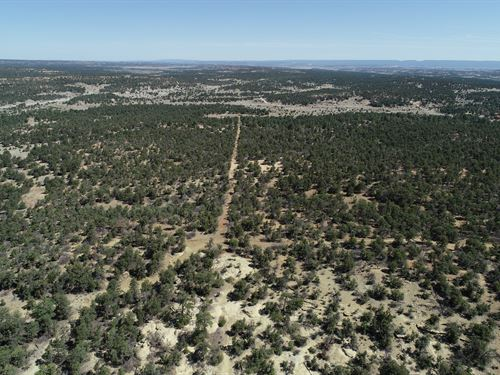 13 Ac In The Candy Kitchen Of Nm Lot For Sale By Owner In Ramah Cibola County New Mexico 282440 Lotflip