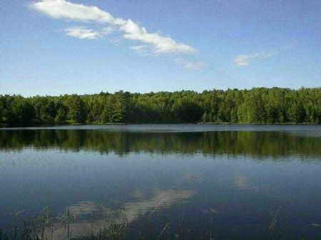 Lot E Estes Lake Rd 1011482 : Sidnaw : Houghton County : Michigan