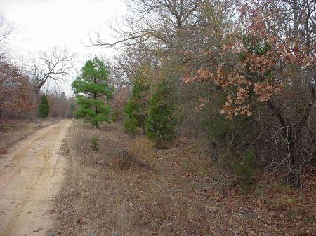 10+ Acres : Blossom : Lamar County : Texas