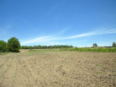 13+ Acres Of Farmland Farmette : Cortlandville : Cortland County : New York