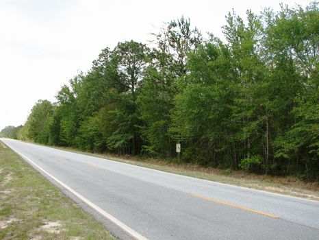 6.67 Acres : Statesboro : Bulloch County : Georgia