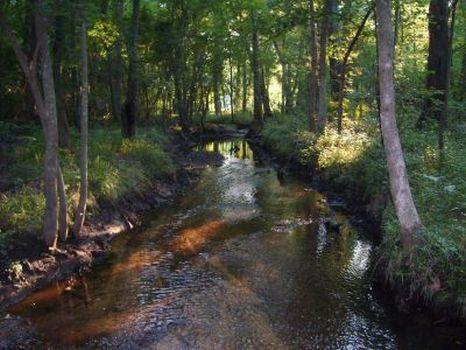 Wagler's Get Away : Blackville : Barnwell County : South Carolina