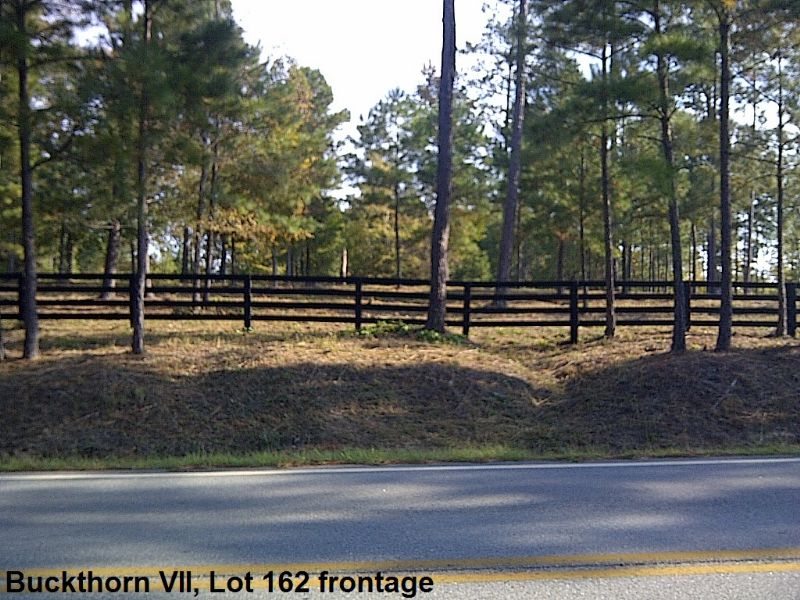 Buckthorn 7, Lot 162 : Eatonton : Putnam County : Georgia