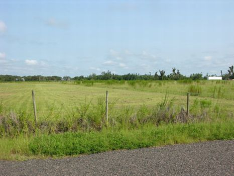 East Lake Buffum Ranchette : Fort Meade : Polk County : Florida