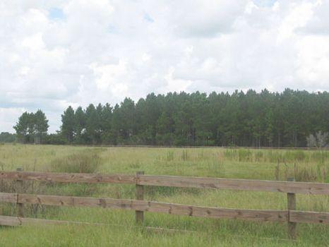 Lorida Country Estates : Sebring : Highlands County : Florida