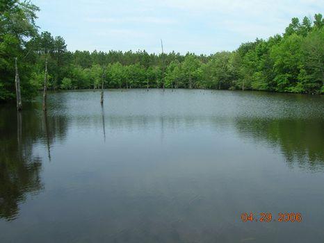 14.6 Acres With Pond : Dublin : Laurens County : Georgia