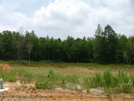 Lot in Pineland Estates : Swainsboro : Emanuel County : Georgia