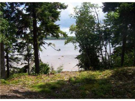 Land On Harrington Bay : Harrington : Washington County : Maine