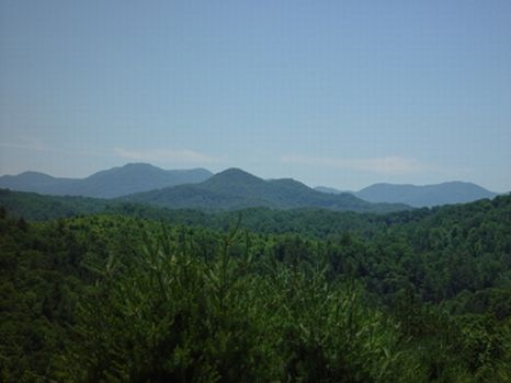 Gorgeous NC Homesites : Asheville : Buncombe County : North Carolina