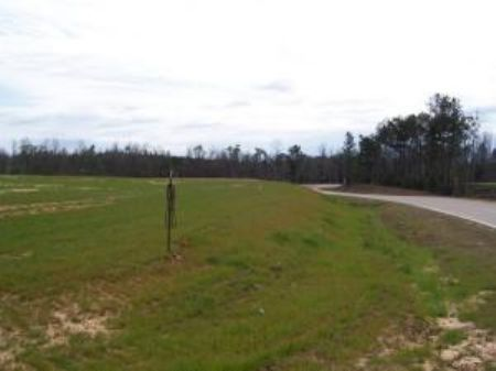 12 Acres : Poplarville : Pearl River County : Mississippi