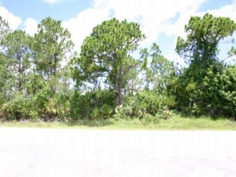 Building Lot in Palm Bay : Palm Bay : Brevard County : Florida