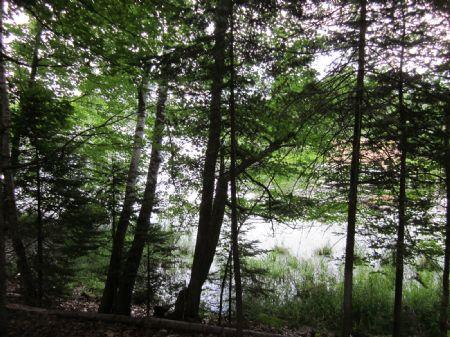 Vacant Land On Lake Minocqua : Minocqua : Oneida County : Wisconsin
