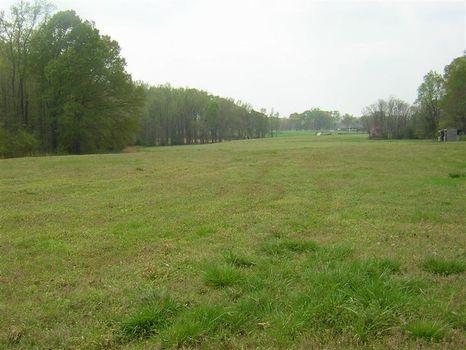 Choice 20 Acres : Buckhead : Morgan County : Georgia