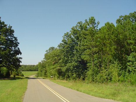 +/- 12 Peaceful & Private Acres : Eclectic : Elmore County : Alabama
