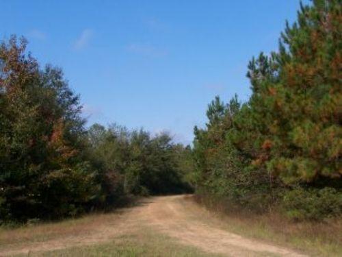 18 Ac Fm 787 : Saratoga : Hardin County : Texas