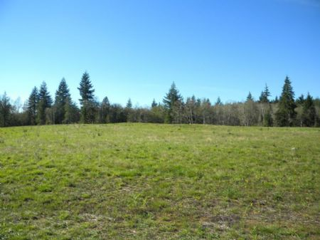 This Cleared And Level 3.3 Acres : Elma : Grays Harbor County : Washington