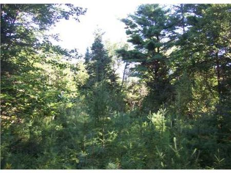 Private Country Lot : Saint Albans : Somerset County : Maine