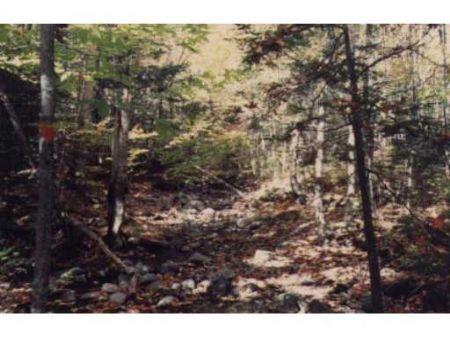 Maximum Privacy : Saint Albans : Somerset County : Maine