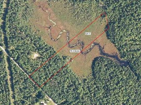 Nice Wooded Parcel : Atkinson : Piscataquis County : Maine